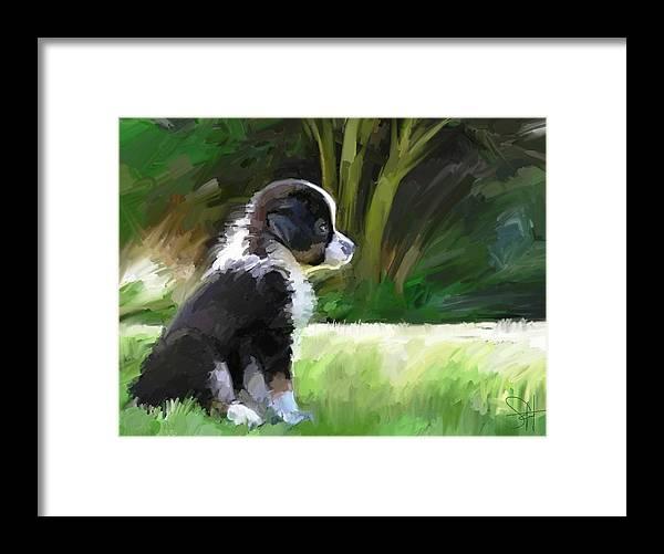 Aussie Dog Collie Framed Print featuring the digital art Ku'uipo by Scott Waters