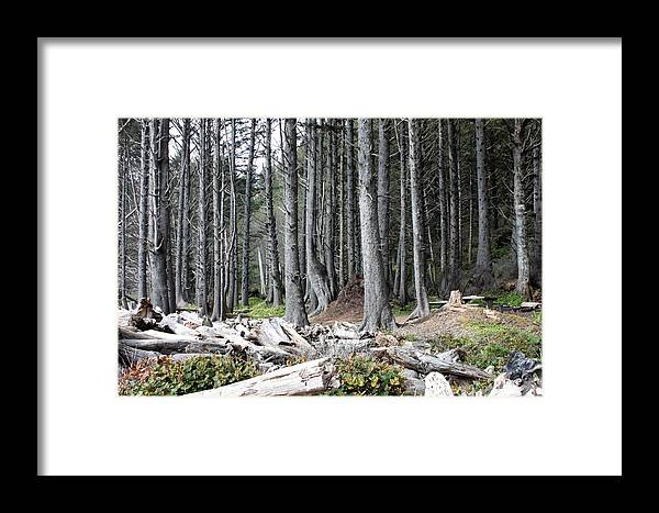 Wolf Legends Framed Print featuring the photograph La Push Beach Trees by Carol Groenen