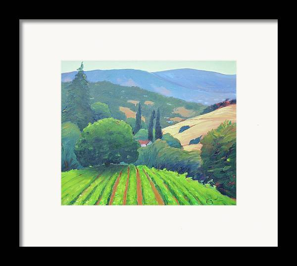 Vinyard Framed Print featuring the painting La Rusticana Afternoon. by Gary Coleman