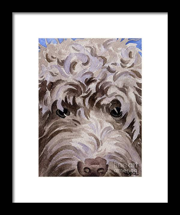 Labradoodle Framed Print featuring the painting Labradoodle by David Rogers