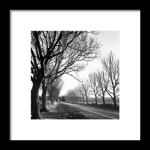 Natureonly Framed Print featuring the photograph Lady Anne's Drive, Holkham by John Edwards