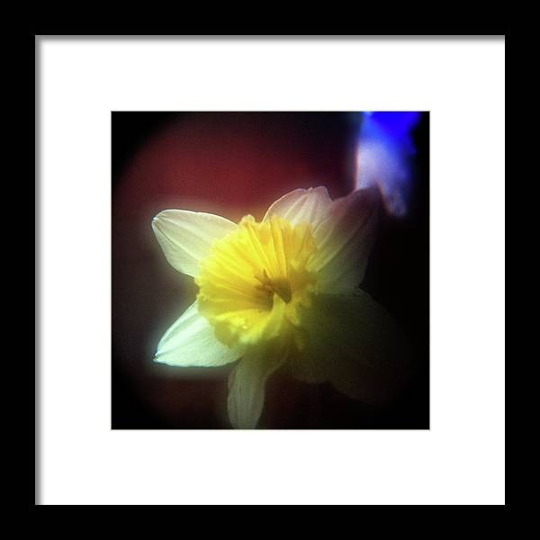 Floral Framed Print featuring the photograph Lady Spring 2 by Paul Anderson