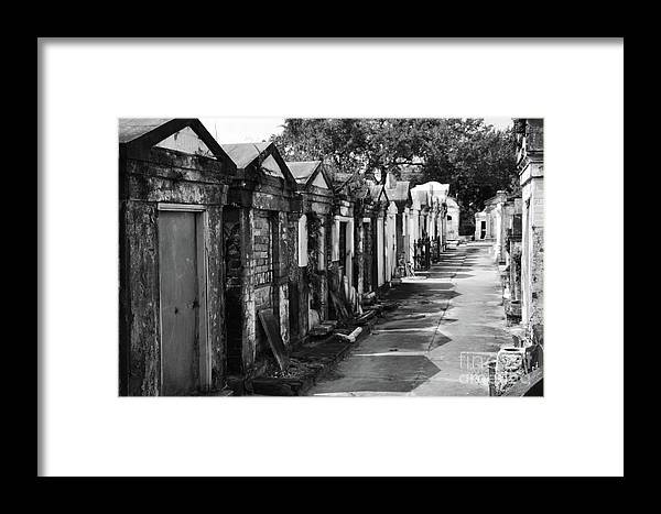 Graveyard Framed Print featuring the photograph Lafayette Row by Elizabeth Donald