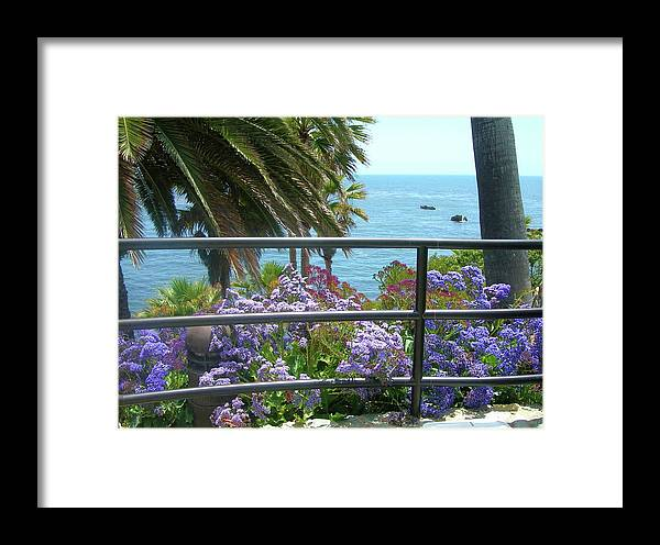 Beach Framed Print featuring the photograph Laguna Beach, Southern California 11 by Larysa Kalynovska