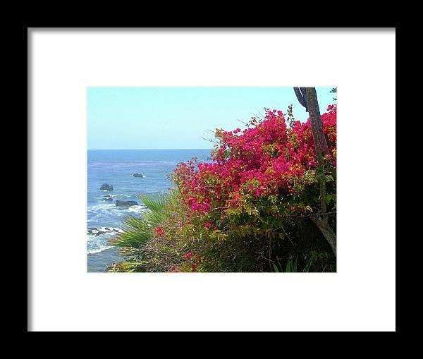 Beach Framed Print featuring the photograph Laguna Beach, Southern California 3 by Larysa Kalynovska