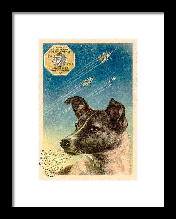 Laika Framed Print featuring the photograph Laika The Space Dog Postcard by Detlev Van Ravenswaay