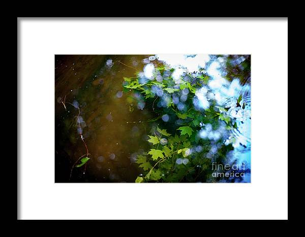 Lake Framed Print featuring the photograph Lake Capture by Lacey Renae