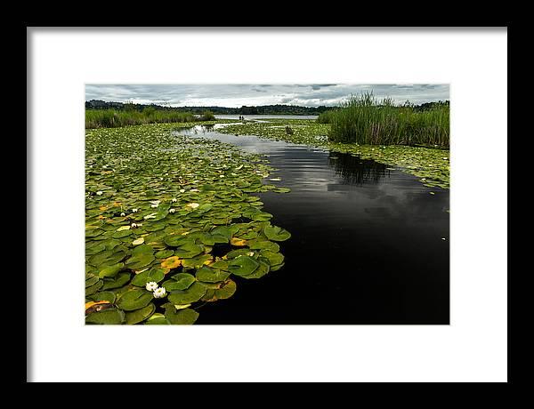 Seattle Framed Print featuring the photograph Lake Washington Waterway by Thorsten Scheuermann