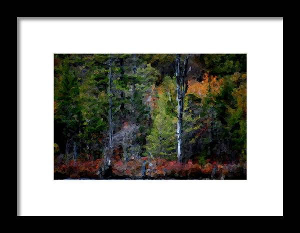Digital Photograph Framed Print featuring the photograph Lakeside In The Autumn by David Lane