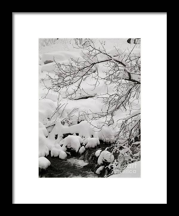 Utah Framed Print featuring the photograph Lambs Canyon In Winter by Dennis Hammer