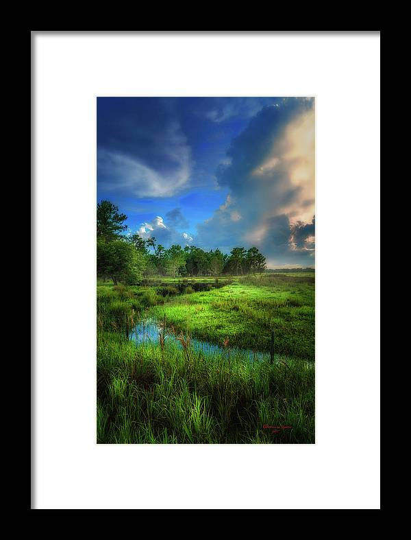 Bartow Framed Print featuring the photograph Land Of Milk And Honey by Marvin Spates
