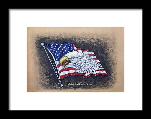 Birds Framed Print featuring the painting Land Of The Free by Lilly King