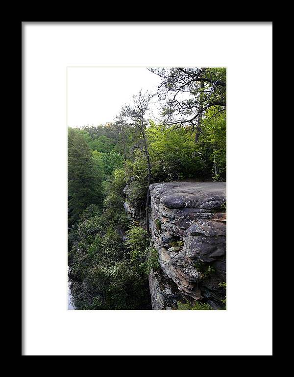 Landscape Framed Print featuring the photograph Landscape And Trees by Dwight Cook