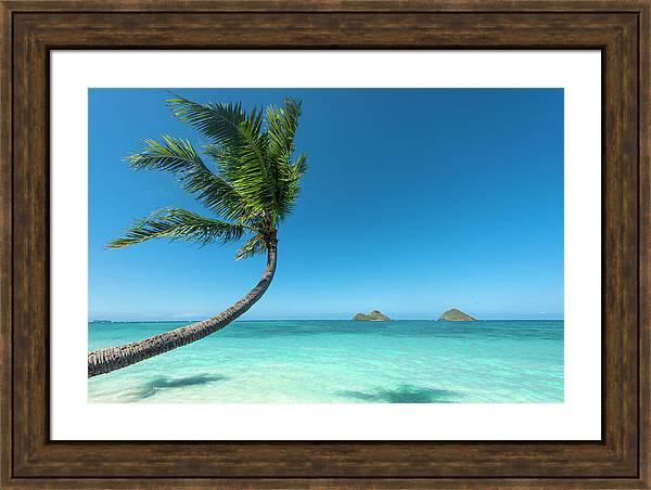 Lanikai Hawaii by Leonardo Dale