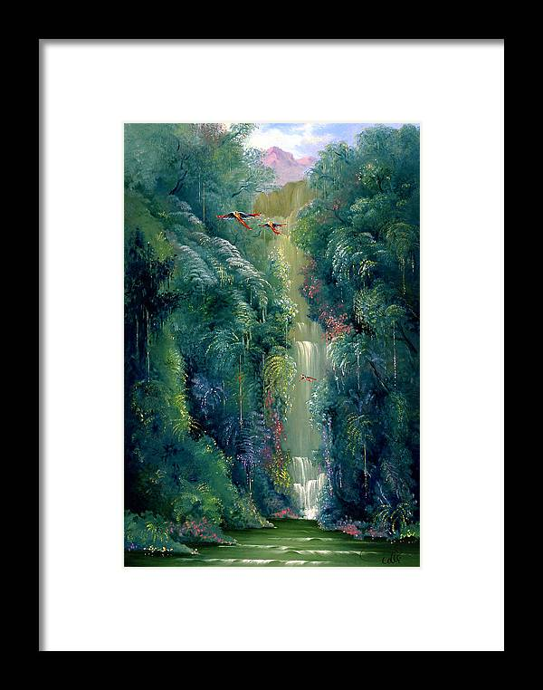 Landscape Framed Print featuring the painting Lapa Rios by Hans Doller