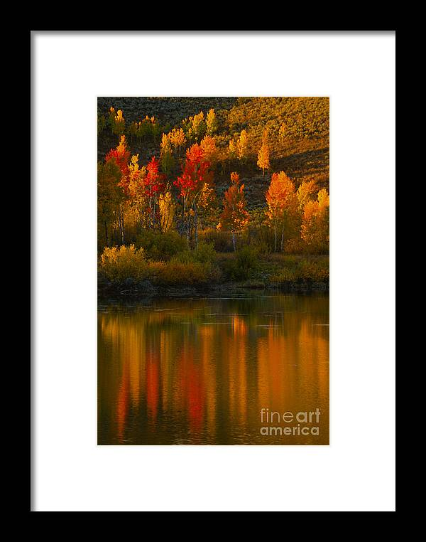 Grand Teton Framed Print featuring the photograph Last Light At Oxbow Bend by Sandra Bronstein