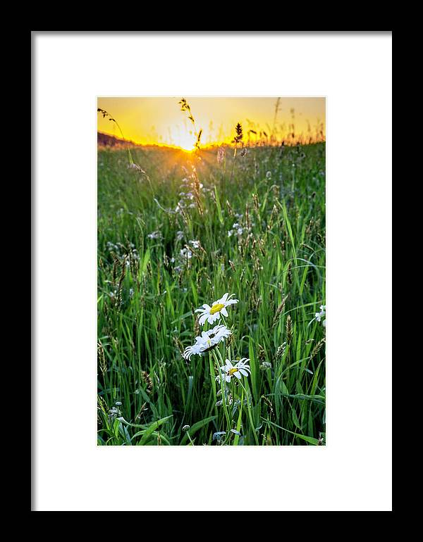 Sunset Framed Print featuring the photograph Last Light by Tyler Penland