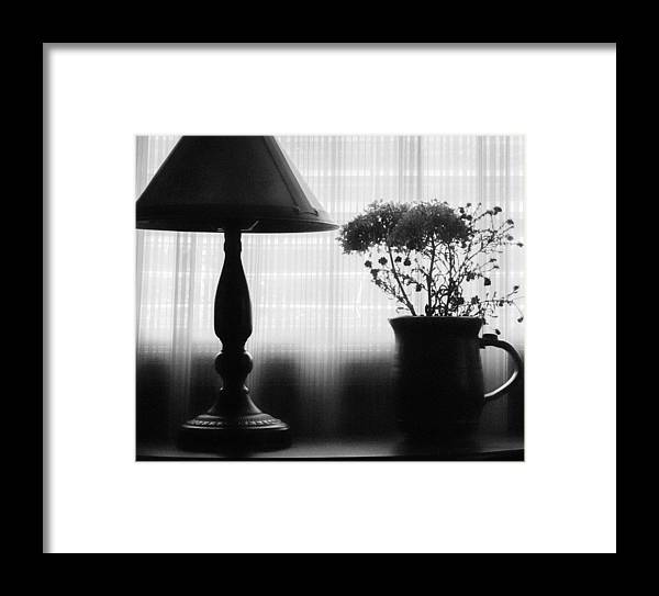 Still Life Framed Print featuring the photograph Late Afternoon by Bonnie Bruno