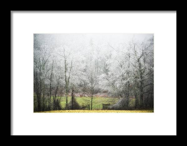 Ice Storm Framed Print featuring the photograph Late Fall Ice Storm Central Ma 2008 by Richard Danek