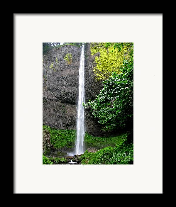 Waterfall Framed Print featuring the photograph Latourelle Falls by PJ Cloud