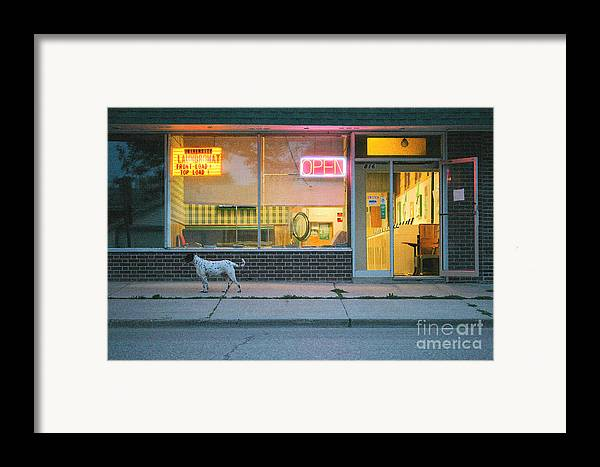 Dog Framed Print featuring the photograph Laundromat Open by Steve Augustin