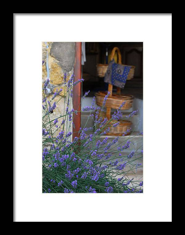Provence Framed Print featuring the photograph Lavender Blooming Near Stairway by Anne Keiser