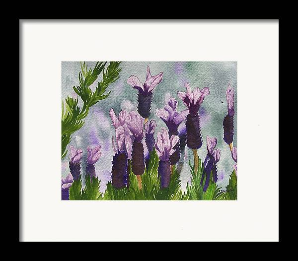 Floral Framed Print featuring the painting Lavender by Robert Thomaston