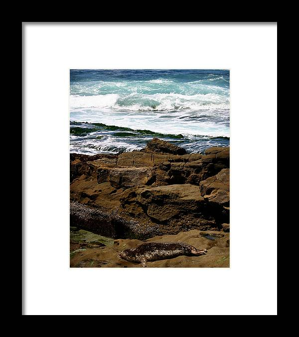 Beach Framed Print featuring the photograph Lazy Days by Anthony Jones