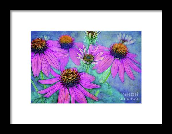 Flowers Framed Print featuring the photograph Le Clan Des Cinq by Variance Collections