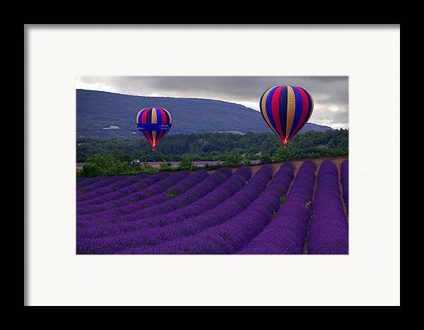 Lavender Fields Framed Print featuring the photograph Le Matin by John Galbo