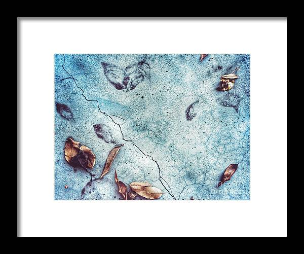 Landscape Framed Print featuring the photograph Leaf Ghosts by John Castell