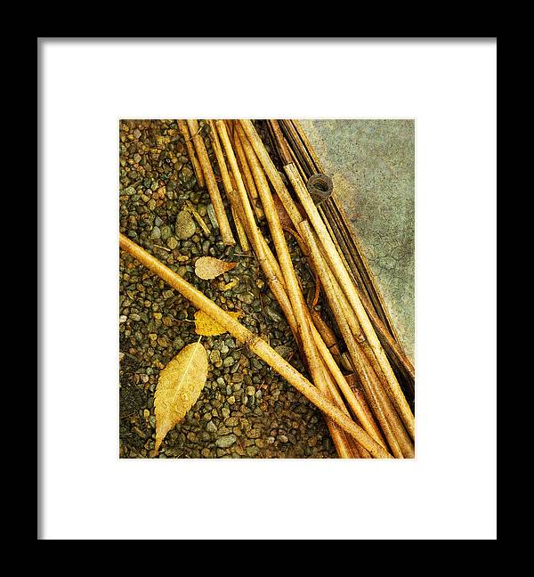 Leaf Framed Print featuring the photograph Leaf Zen U by Rebecca Cozart