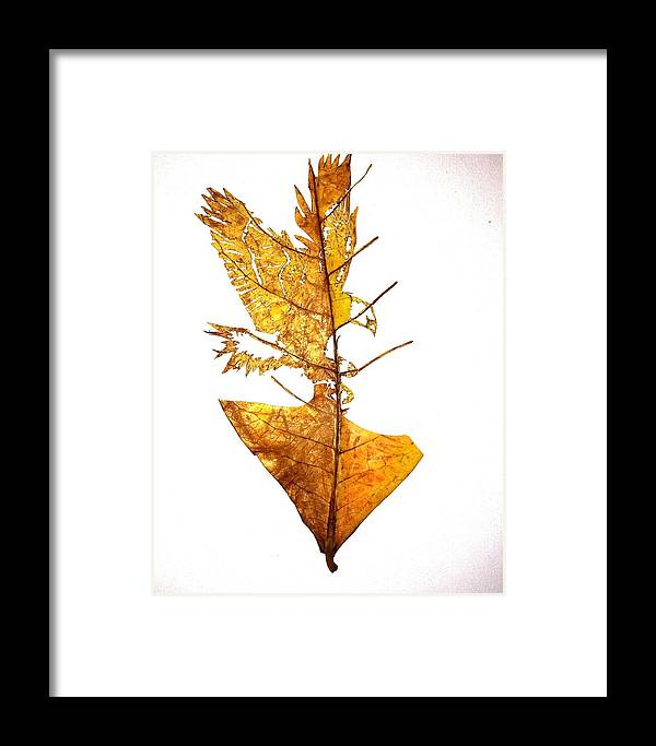 Portrait Framed Print featuring the mixed media Leafcarving by Deepan Sa