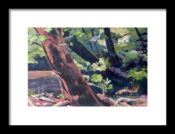 Tree Framed Print featuring the painting Leaning Tree At Eno River by Jude Lobe