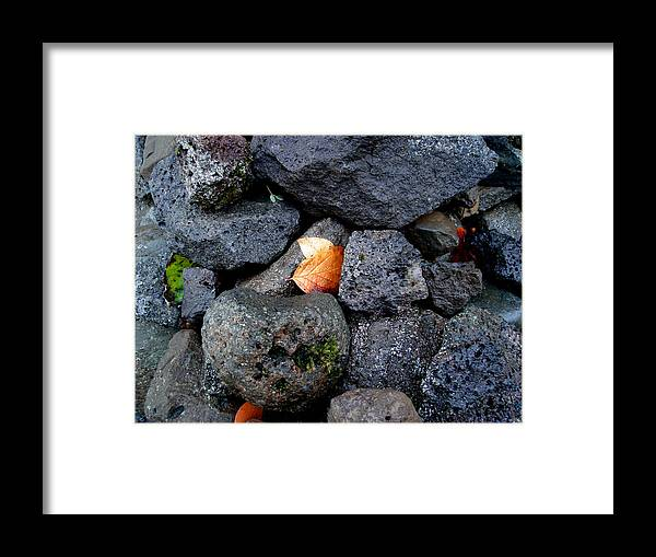 Nature Framed Print featuring the photograph Leaves And Stones by Marilynne Bull