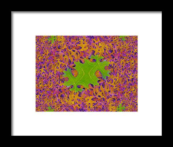 Leaves Framed Print featuring the photograph Leaves In Fractal 2 by Tim Allen