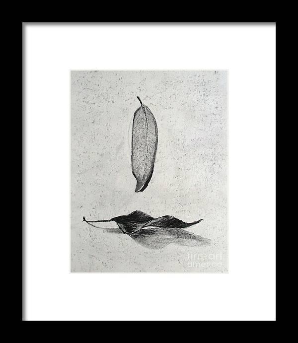 Fallen Leaves Framed Print featuring the drawing Fallen Leaves by Karen Kammermann