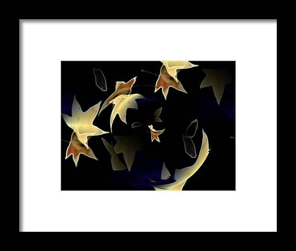 Leaves Framed Print featuring the photograph Leaves by Tim Allen