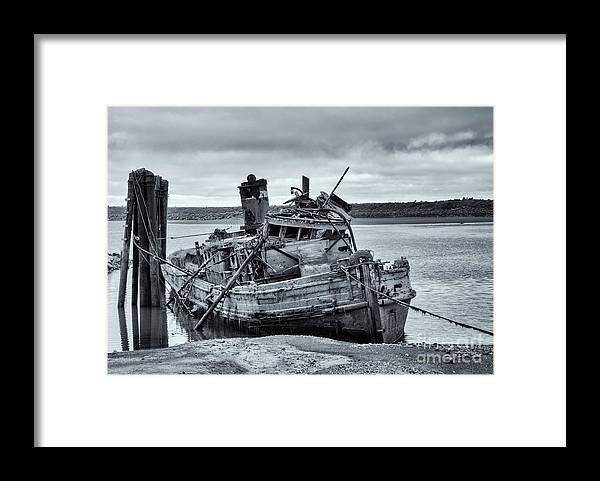 Mary D Hume Framed Print featuring the photograph Left To Rot by Mike Dawson