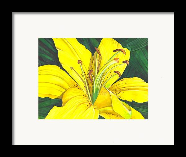 Lily Framed Print featuring the painting Lemon Lily by Catherine G McElroy