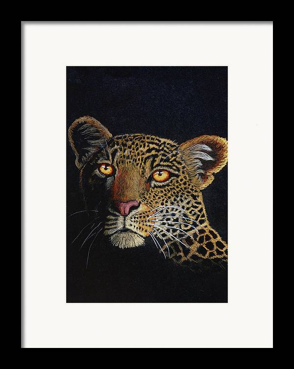 Leopard Framed Print featuring the drawing Leopard In The Dark by Lorraine Foster