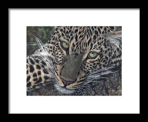 Leopard Framed Print featuring the painting Leopard Portrait by John Neeve