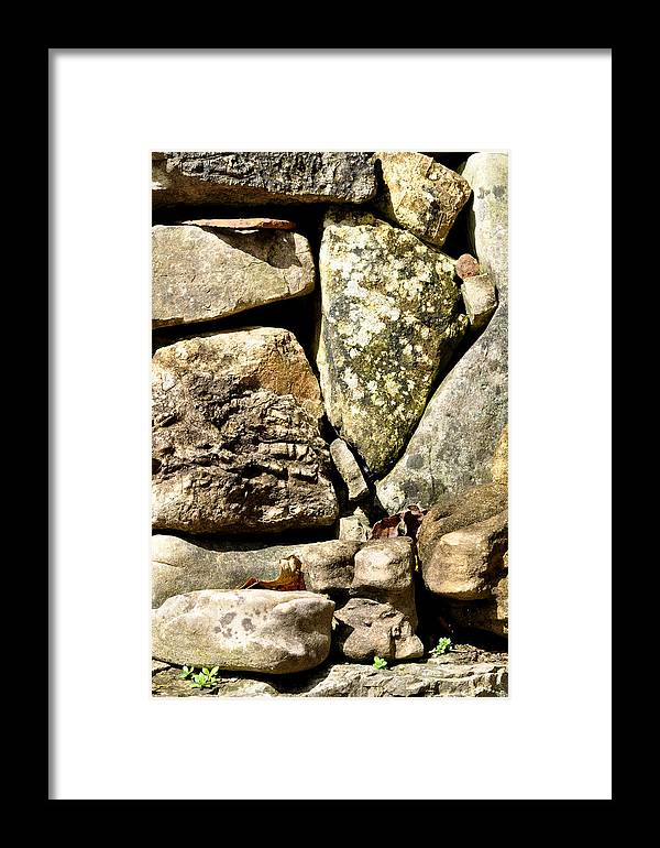 Nature Framed Print featuring the photograph Lichen And Moss by Jan Amiss Photography