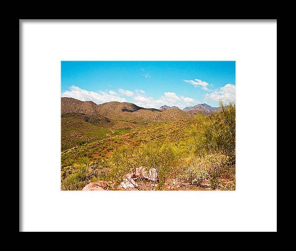 Photo Framed Print featuring the photograph Life In The Southwest by J Ringo