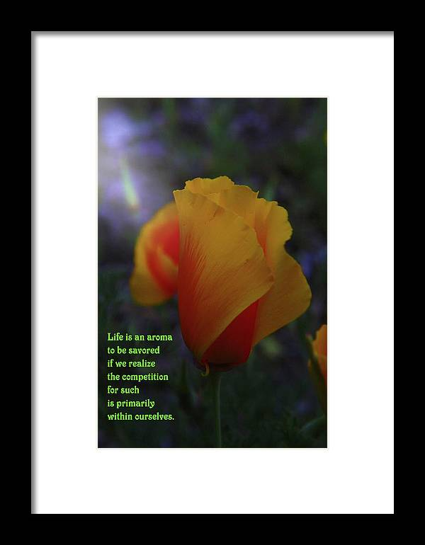 Poppy Framed Print featuring the photograph Life Is An Aroma by Jeff Swan