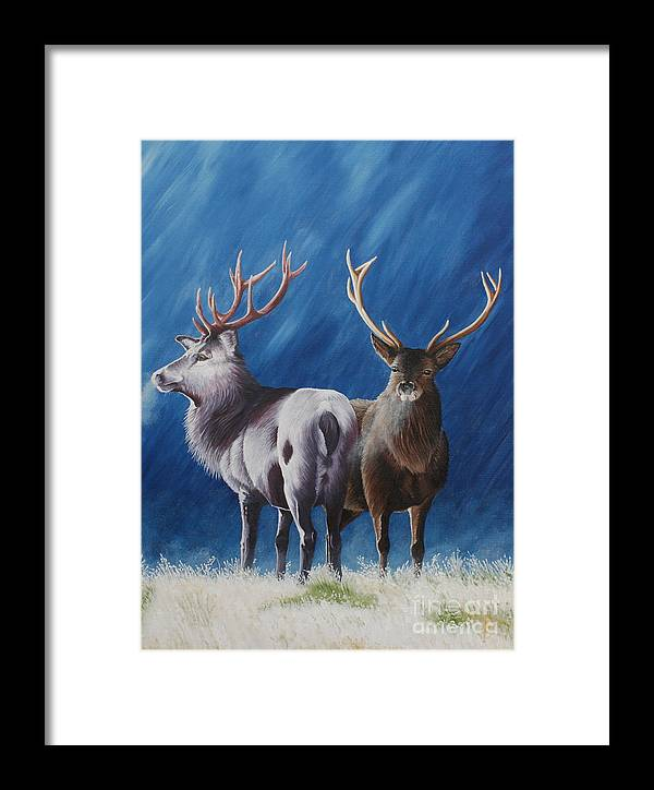 Portrait Framed Print featuring the painting Light And Dark Stags by Pauline Sharp