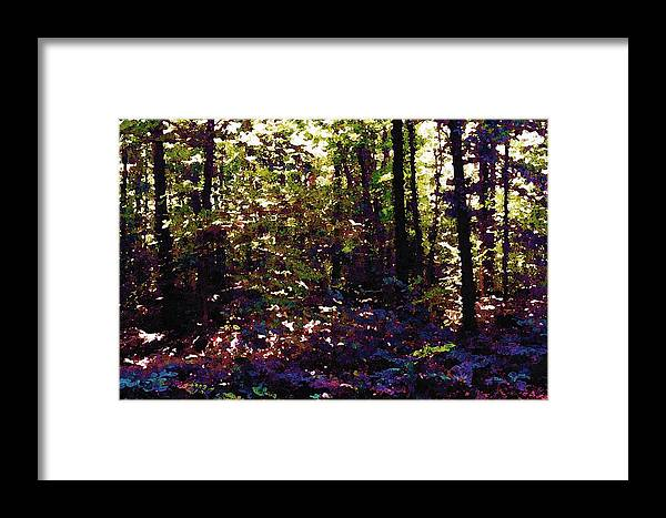 Abstract Framed Print featuring the photograph Light And Trees Wcsa by Lyle Crump