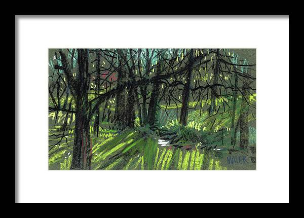 Sunlight Framed Print featuring the drawing Light Through The Trees by Donald Maier
