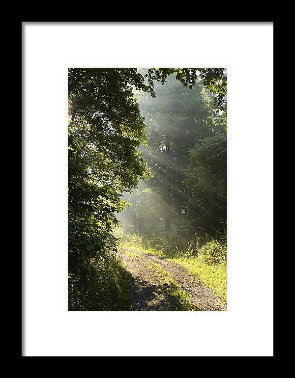 West Virginia Framed Print featuring the photograph Light Unto My Path by Thomas R Fletcher