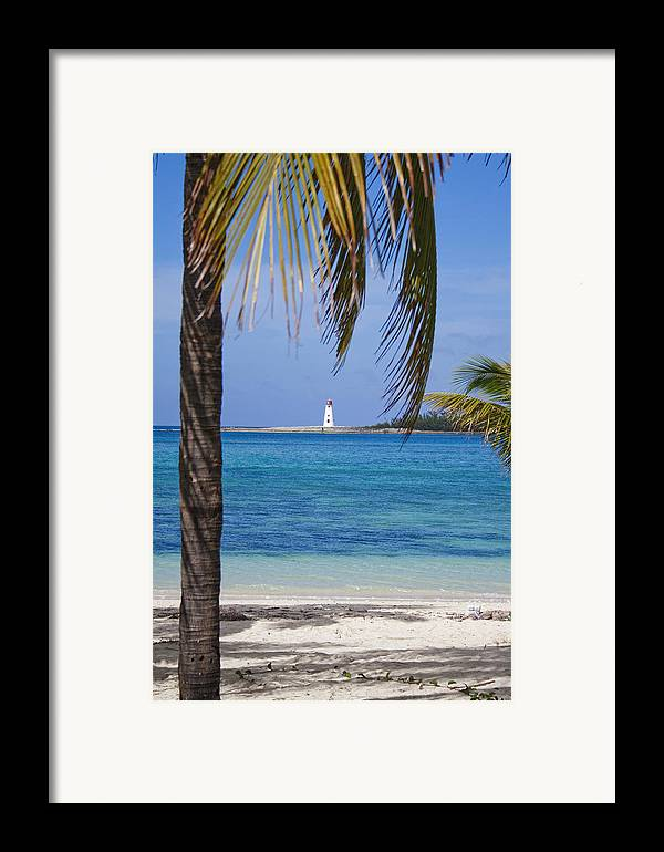 Lighthouse Framed Print featuring the photograph Lighthouse Under Palm by Joshua Francia